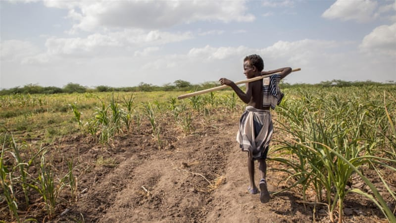 Drought leaves 6 million Ethiopian children hungry