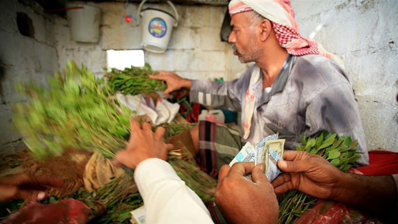 Yemen imposes weekday ban on khat sale | News | Al Jazeera