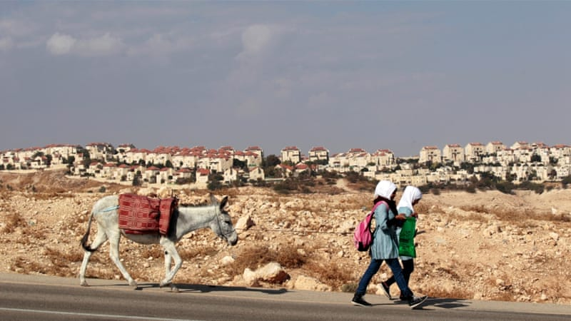Palestinian schoolgirls walk with a donkey as a West Bank Jewish settlement is seen in the background [REUTERS]