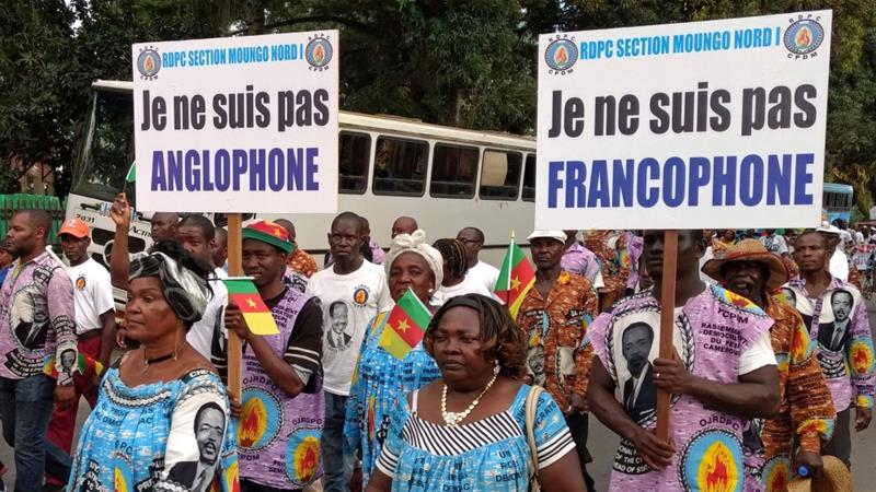 How will Cameroon fix its language divide?