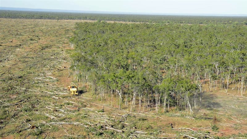 soaring deforestation new threat to great barrier reef australia