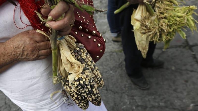 A Different Kind Of War In Americas Backyard Latin America Al