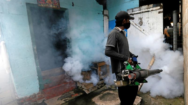 Death toll of dengue victims in Sri Lanka rises to 301