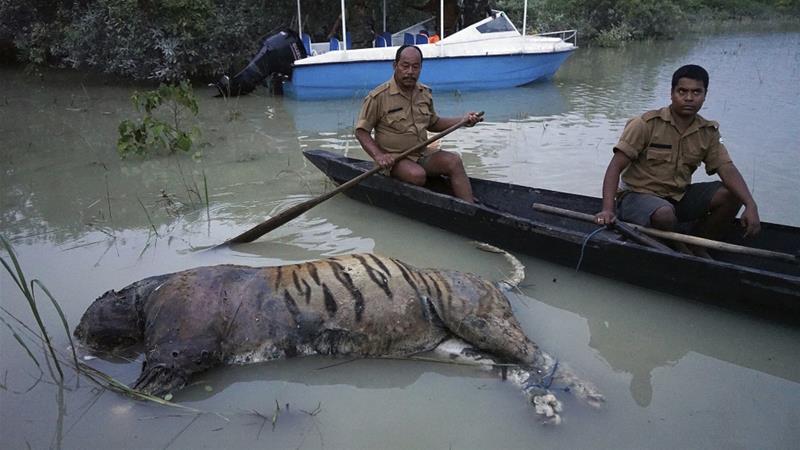 Image result for floods