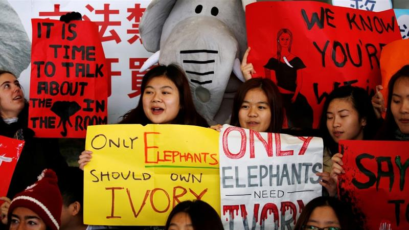 African wildlife campaigners laud Hong Kong's ban on ivory trade