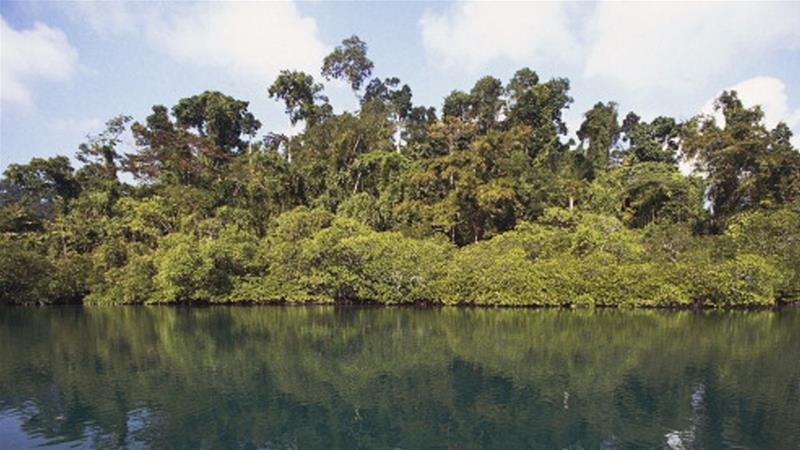 Remote tribe kills American tourist on Andaman and Nicobar Islands