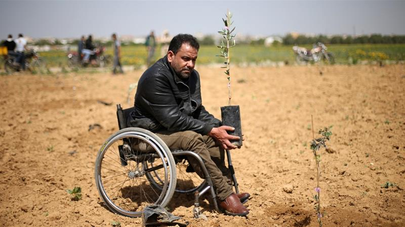 A Palestinian man holds an olive seedling to be planted during a protest leading up to Land Day, near the border with Israel in the southern Gaza Strip on March 20, 2018 [Ibraheem Abu Mustafa/Reuters]