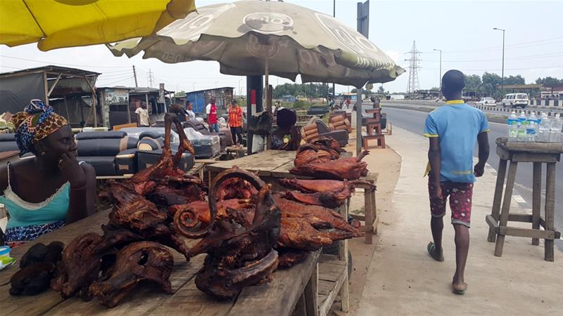 Nigeria bushmeat industry rebounds after Ebola outbreak