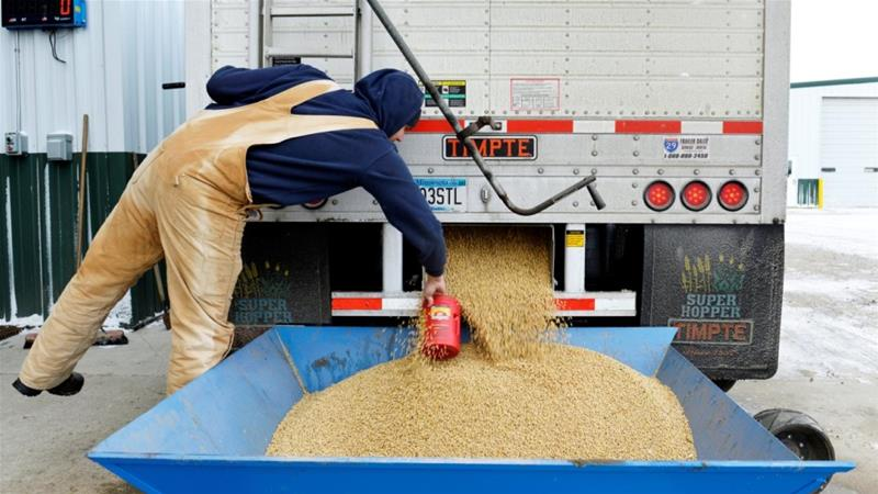 A worker takes a sample from an incoming truckload of soya beans in the United States [Dan Koeck/Reuters]