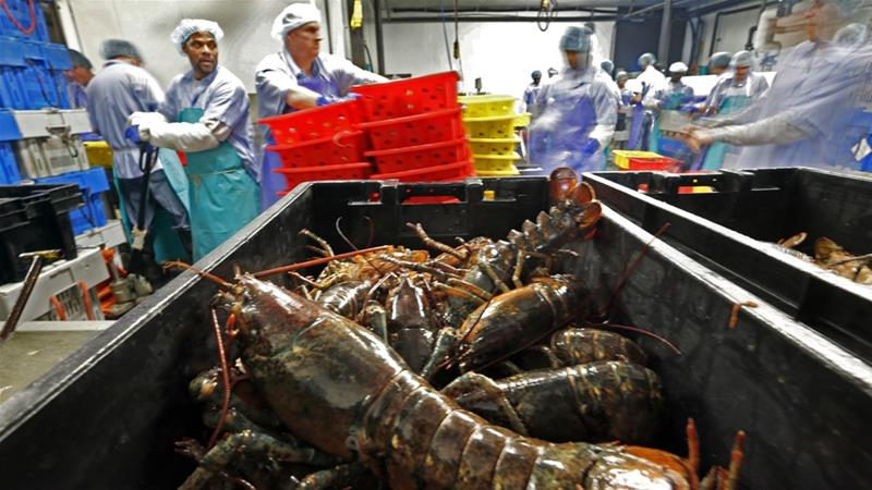 In 2017, the United States exported more than $1.3bn worth of seafood to China [AP]