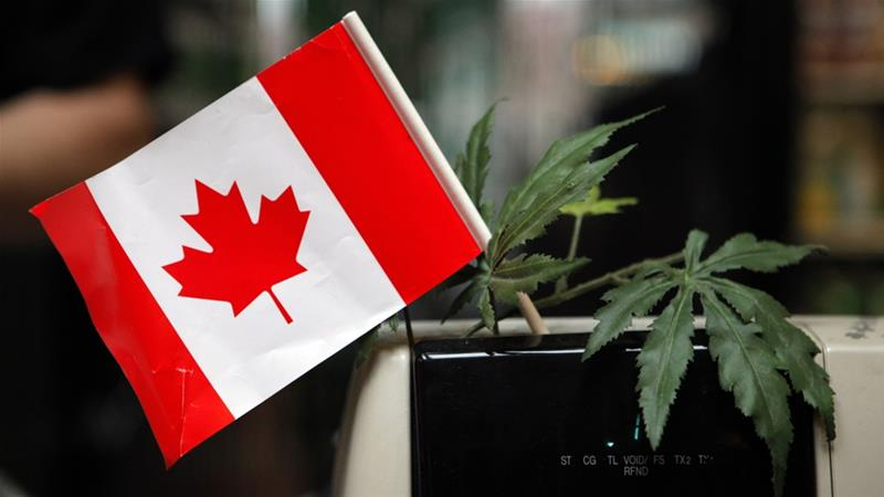If the legislation gets approved, Canada would become only the second country in the world to legalise recreational cannabis, after Uruguay did so in 2013 [Jae C Hong/The Associated Press]