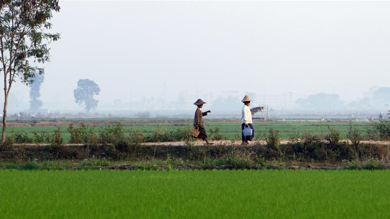 HRW urges Myanmar to address illegal land confiscations