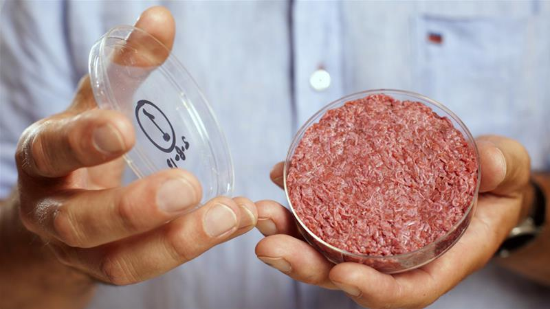 The world's first lab-grown beef burger is seen during an event in London in 2013  [David Parry/Reuters]