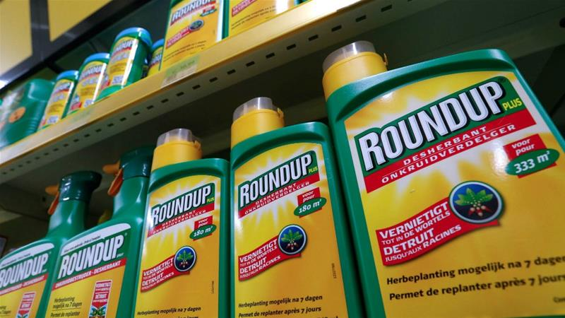 Monsanto has denied any link between the glyphosate the active ingredient in Roundup and cancer