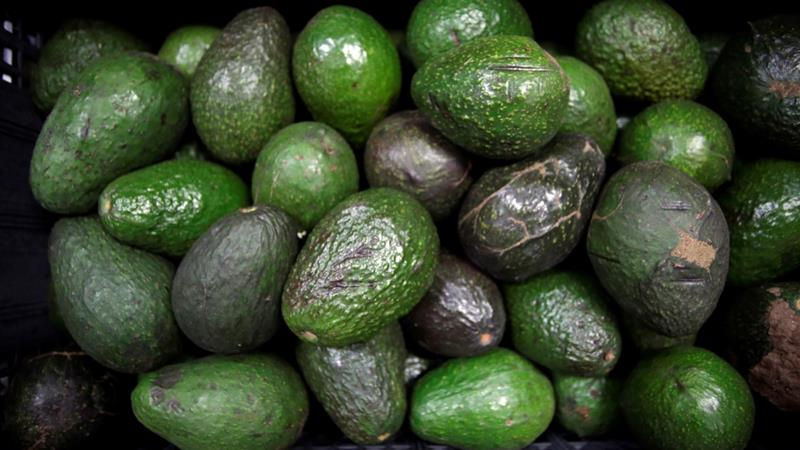 Temporary fuel shortages across various Mexican states is expected to affect the transport of avocados and availability of guacamole in the US on February 3, the date of the Super Bowl [Reuters]