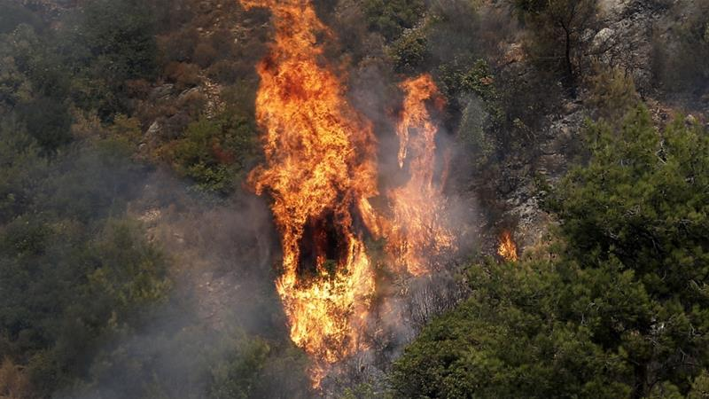 A fire tears through a forest in the mountainous area near the village of Meshref in Lebanon's Shouf mountains [Joseph Eid/AFP]