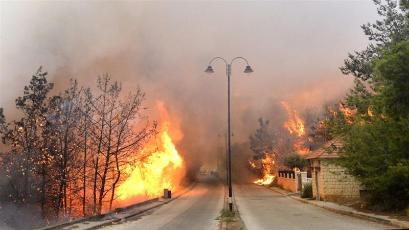 Fire takes out forests in the mountainous area that flank Damour river near the village of Meshref in Lebanon's Shouf mountains [Hussam Chbaro/Anadolu Agency]