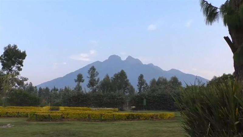 The town of Musanze is situated at the foot of volcanoes where gorillas live [Reuters]