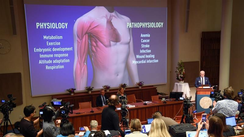 Trio wins Nobel Prize for Medicine for work on cells, oxygen