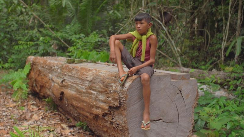 Amazon Burning: Death and Destruction in Brazil's Rainforest