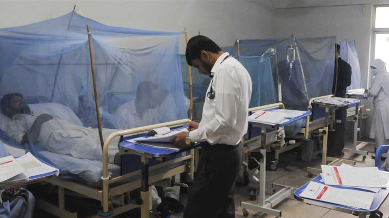 Record-high 44,000 dengue cases reported in Pakistan