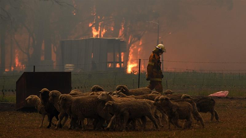 Australian firefighters access badly burnt towns; PM defends climate policies