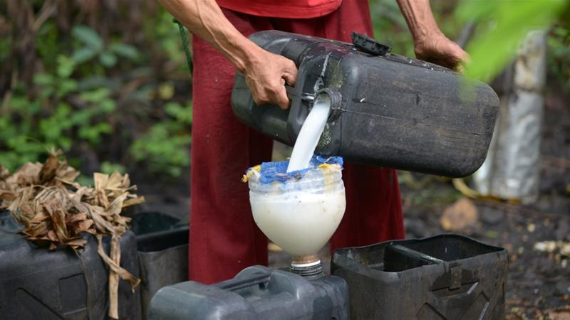 A man pours coconut sap to be used in a local wine called tuba, which is the the raw material for lambanog [File: Jay Directo/AFP]