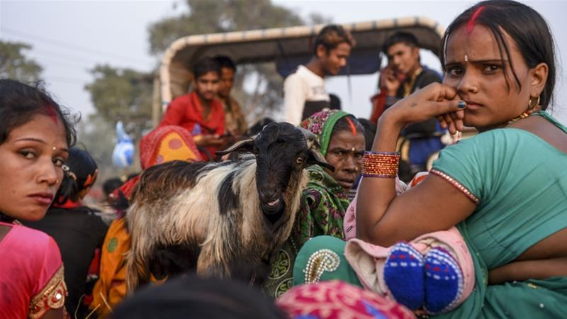 Nepal's Gadhimai Fest is The World's Largest Animal Sacrifice Ritual