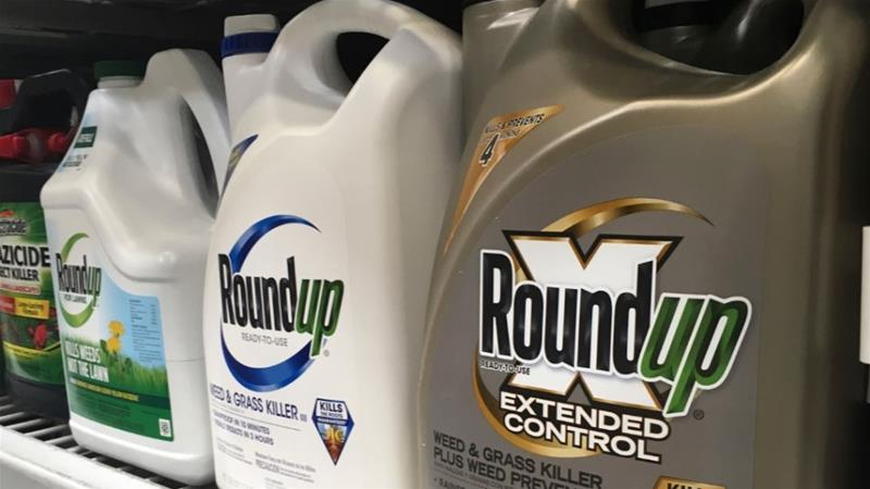 Bayer insists Roundup, a glyphosate-based product, is not linked to cancer [File: Haven Daley/AP Photo]