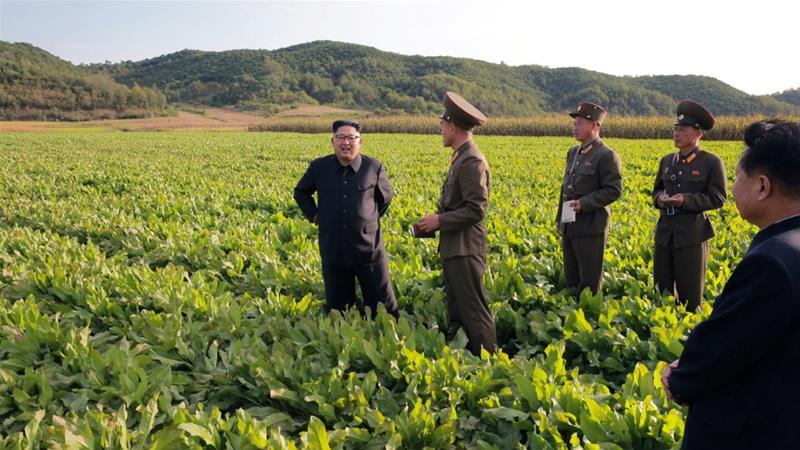 North Korea faces food crisis after poor harvest