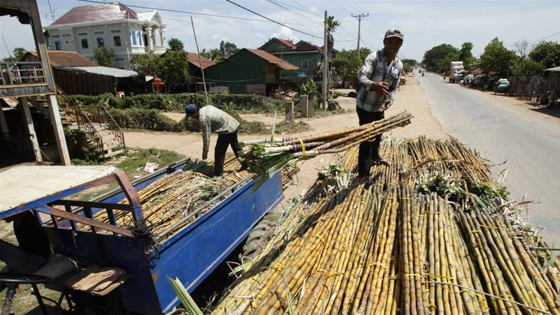 Two Cambodian sugar farmers are bringing a case against Thai firm Mitr Phol claiming its subsidiary illegally cleared their land. Mitr Phol denies responsibility [File: Heng Sinith/AP]