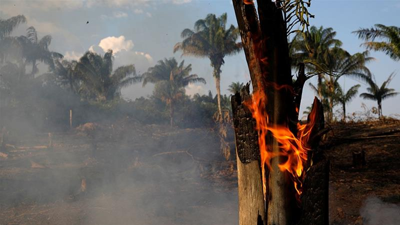 A tract of Amazon jungle is seen burning as it is being cleared by loggers and farmers in Iranduba, Amazonas state, Brazil [Bruno Kelly/Reuters]