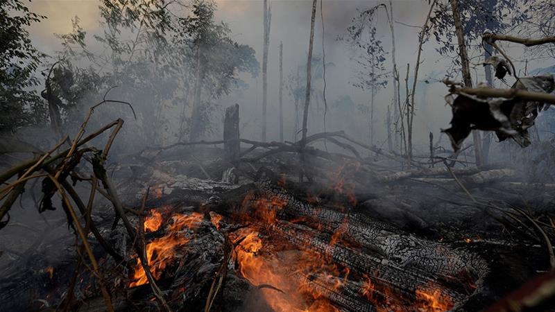A fire burns a tract of Amazon jungle as it is cleared by loggers and farmers near Porto Velho, Brazil [Ricardo Moraes/Reuters]