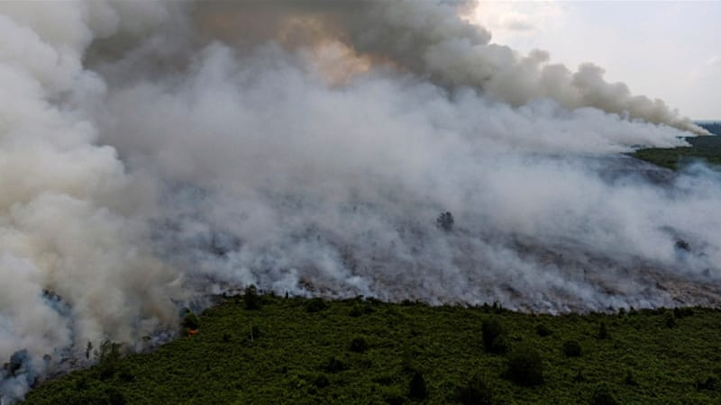 Indonesia forest fires choke Southeast Asia