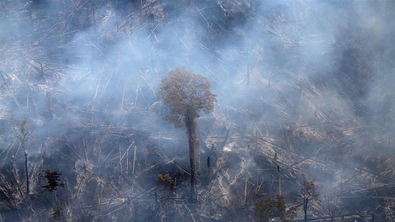 A tract of Amazon jungle burning as it is cleared by farmers in Itaituba, Para, Brazil [File: Ricardo Moraes/Reuters]