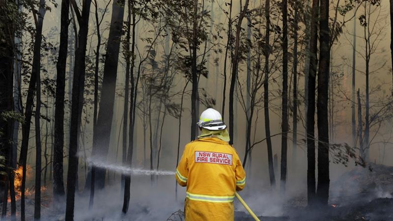 A firefighter manages a controlled burn near Tomerong, Australia, January 8, 2020, to contain a larger fire nearby [File: Rick Rycroft/AP Photo]