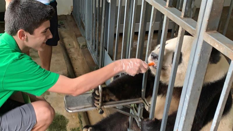 The writer's son Luko feeding a panda at Dujiangyan's Panda Base in Chengdu, China [Photo courtesy of Jo Varnish]