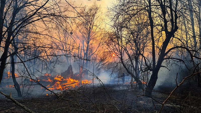 Forest fire near Chernobyl boosts radiation level
