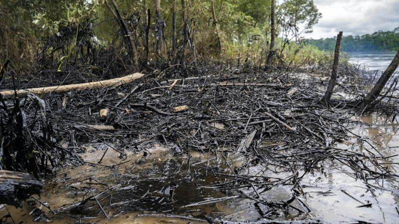 The estimated 15,800 barrels of oil spilled by two pipelines were accompanied by flash floods, extending the reach of the contamination. Amarunmesa, Orellana, Ecuadorian Amazon, 2020 [Telmo Ibarburu]