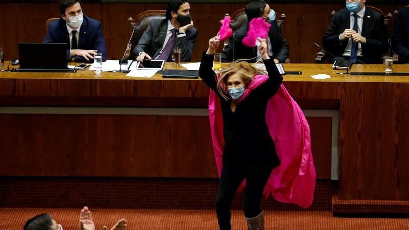Left-wing Chilean Congresswoman Pamela Jiles, who represents some of the capital Santiago's poorest suburbs, charged through the Congress chamber in a pink cape and feathered fans to celebrate the pension bill's approval at an early stage [File: Rodrigo Garrido/Reuters]