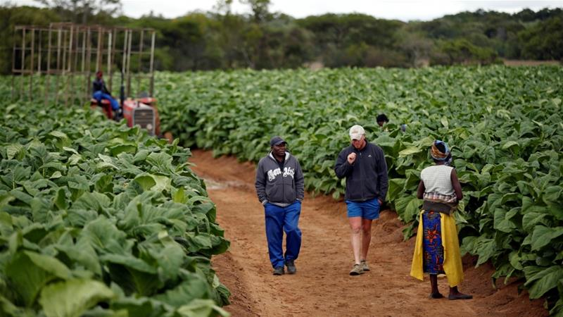 Zimbabwe to pay white farmer $3.5bn in land compensation deal