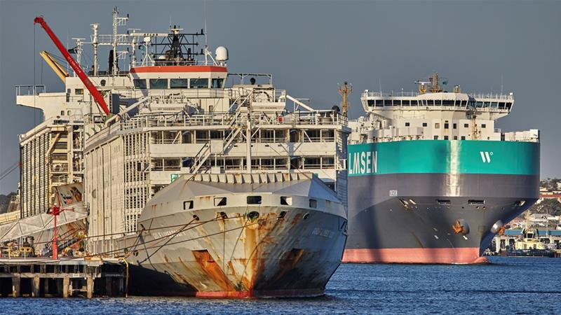 Ship Carrying 43 People And 5,800 Cows 'Sinks' During Typhoon