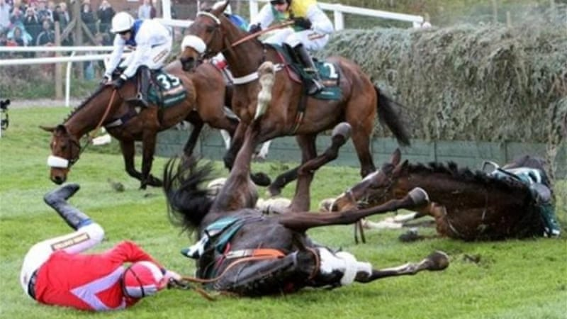 According to Pete, ridden by Harry Haynes, had to be put down after falling at Becher's Brook [AP]