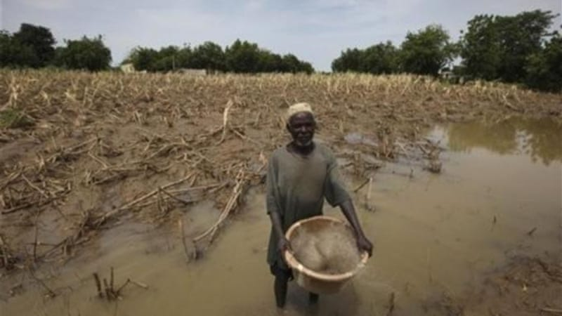 Farming areas in Africa will be seriously affected by rising temperatures [AP]