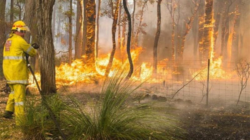 At least 44 houses were destroyed in a forest fire in Perth at the weekend [EPA]