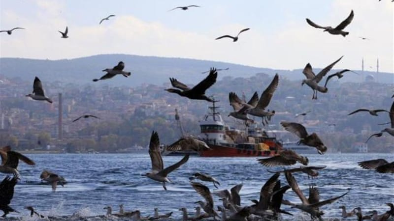 The 'Channel Istanbul' project may have disastrous environmental consequences, writes Aktar [AFP]
