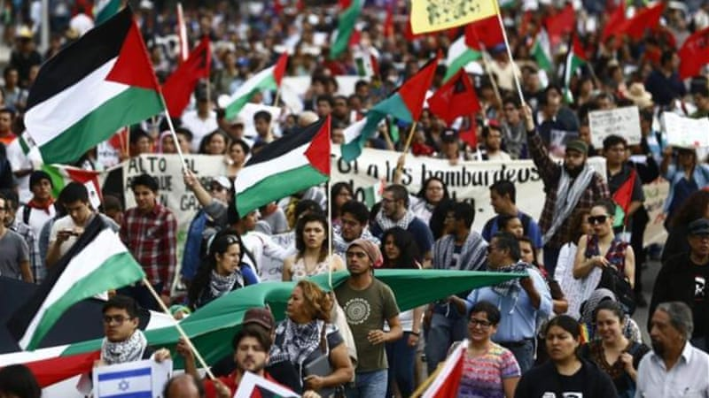 Pro-Palestinian protesters rally against violence in the Gaza Strip in Mexico City July 29, 2014 [Reuters]