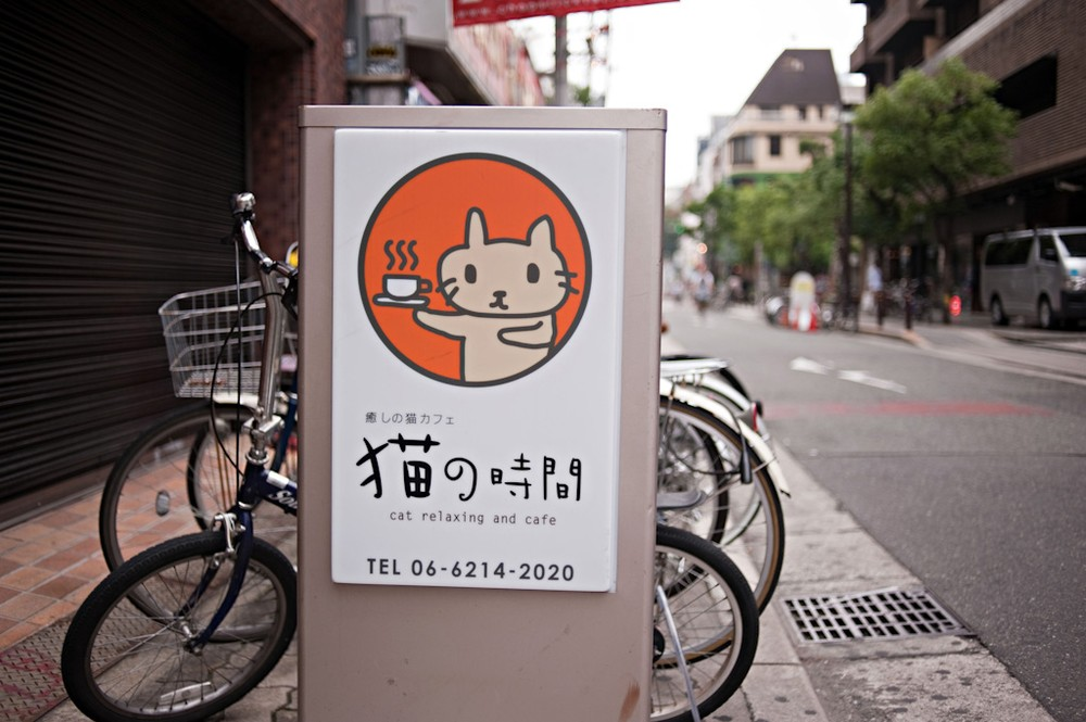 \(***)Cat Time\(***) (Neko No Jikan) is  a cat cafe  that opened in 2004 as Osaka\(***)s first cat cafe where customers pay by the hour to enjoy the company of cats, Osaka, Kansai region, Japan.