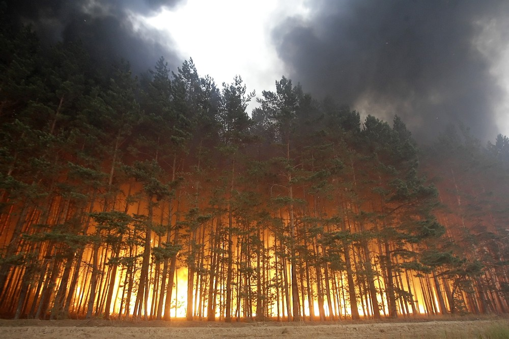 Black carbon, a fine soot released into the atmosphere by forest fires, is a major contributor to global warming.