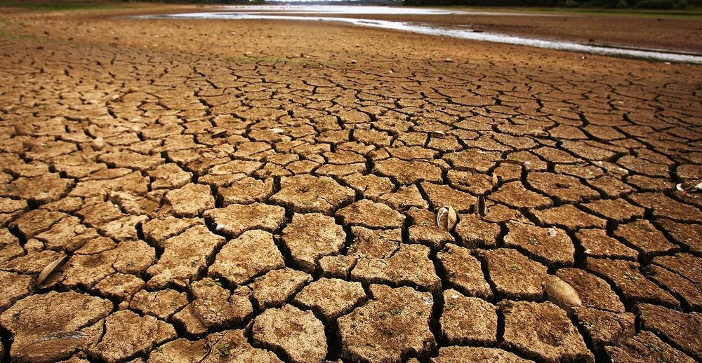 Scientists believe that climate change will increase the likelihood of extreme droughts over the course of the next century.